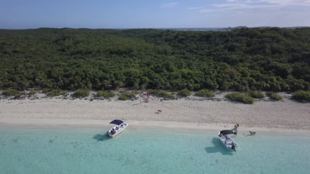 pig beach aerial exumas bahamas - bahamas stock videos and b-roll footage