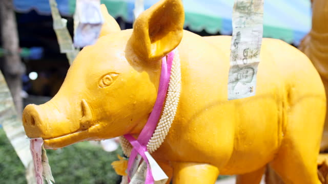 pig candle parade in buddha day, thailand traditional festival - pig stock videos & royalty-free footage