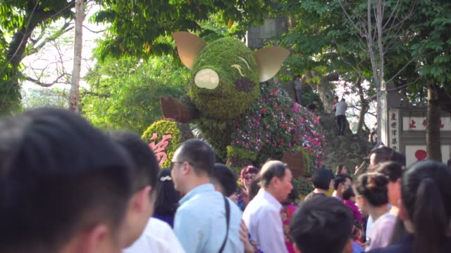 Pig Chinese New Year. Topiary pig symbol made by hedge tree to celebrate Tet and Chinese New Year. Public park next to Ngoc Son and Hanoi, Vietnam.