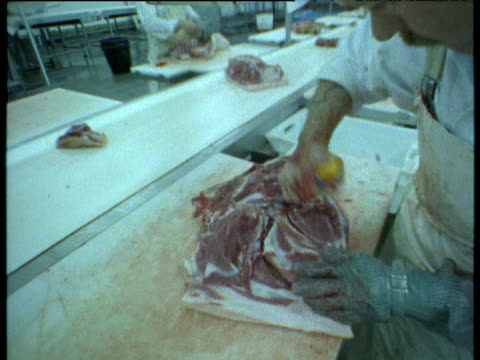 pig parts being butchered in meat processing factory, uk - butcher stock videos & royalty-free footage