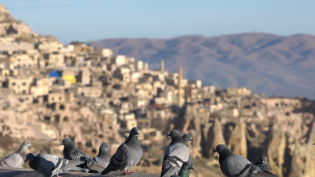 pigeon valley and the town of uchisar, cappadocia. - anatolia stock videos and b-roll footage