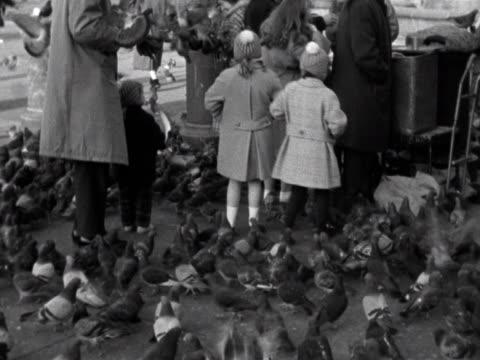 pigeons flock around a group of people at trafalgar square 1961 - trafalgar square stock-videos und b-roll-filmmaterial