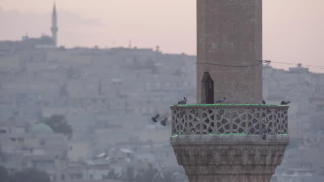 pigeons nesting on mevlid-i halil minaret - minaret stock videos & royalty-free footage