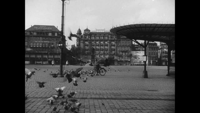 vidéos et rushes de montage pigeons pecking for food and flying along empty street, and plaza and store fronts of abandoned city / strasbourg, france - strasbourg