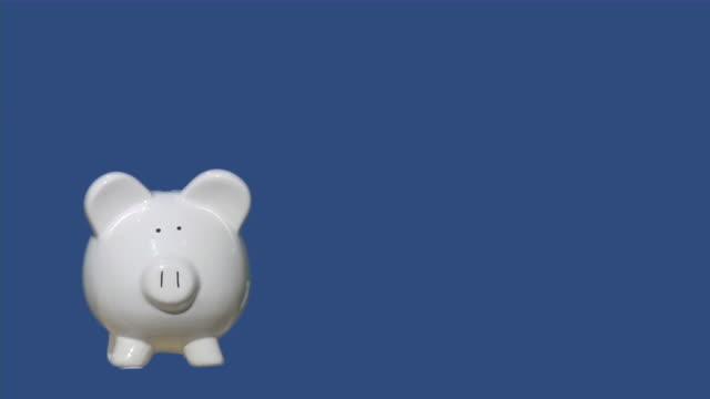 piggy bank. savings, finance, banking, economy concept. chroma key. - piggy bank stock videos & royalty-free footage
