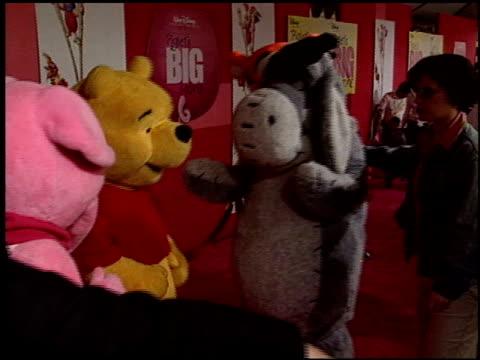 piglet at the 'piglet's big movie' premiere at the el capitan theatre in hollywood california on march 16 2003 - griskulting bildbanksvideor och videomaterial från bakom kulisserna