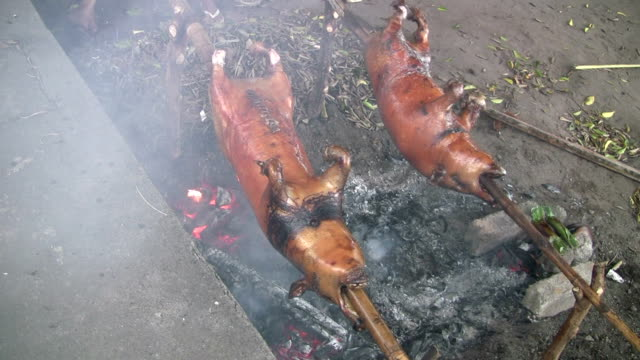 Pigs, spit-roasted, Bali