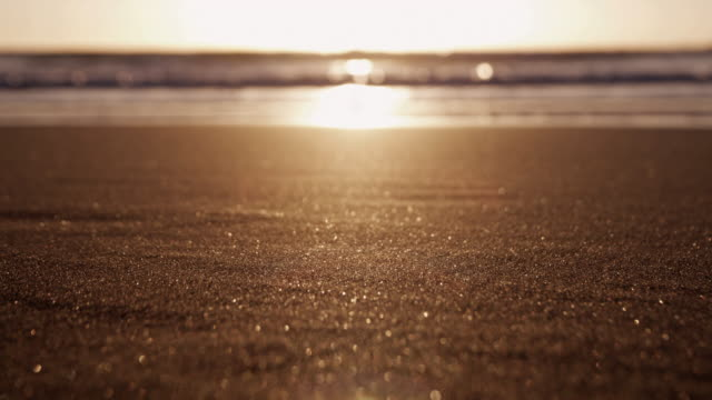 vidéos et rushes de cu selective focus piha beach at sunset, auckland, new zealand - sable