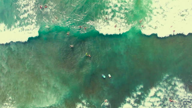 piha beach, surfing aerial view. - auckland stock videos & royalty-free footage