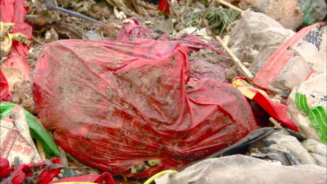 cu pile of garbage with flies crawling around, tianjin, tianjin, china - sacco per immondizia video stock e b–roll