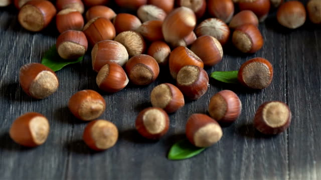 pile of hazelnuts, slow motion - nutshell stock videos & royalty-free footage