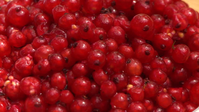 pile of red currants - currant stock videos & royalty-free footage