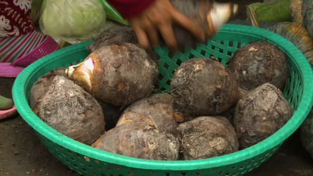 a pile of taro root vegetable in a plastic basket - root vegetable stock videos and b-roll footage