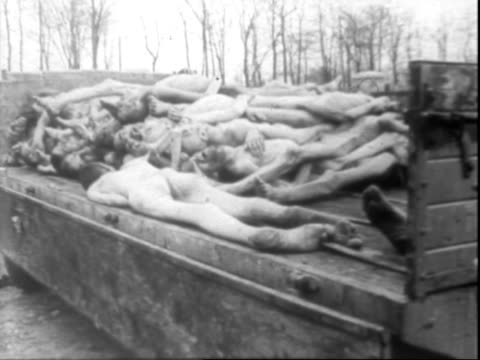 piled bodies of dead buchenwald concentration camp prisoners their contorted faces bearing graphic expressions of horror shock fear disbelief /... - campo di concentramento di buchenwald video stock e b–roll