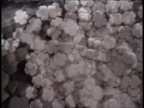 stockvideo's en b-roll-footage met piles of designer drugs, such as ecstasy, in the shape of clovers are seen. - crime or recreational drug or prison or legal trial