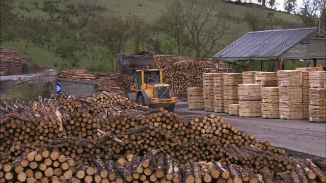 Piles of logs and tractor driving through timber yard, Northern Ireland