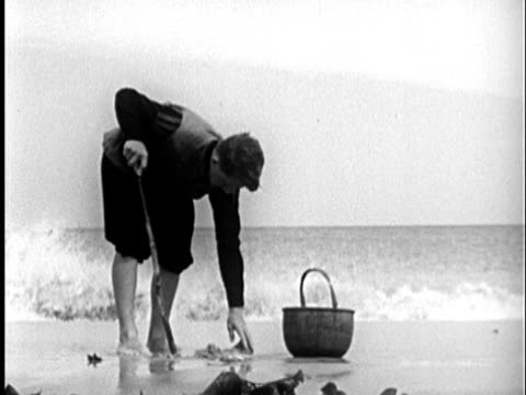 vídeos de stock e filmes b-roll de 1955 b/w reenactment ws pilgrim boy digging for clams on beach; cu hand filling basket with clams / new england, unired states / audio - descalço