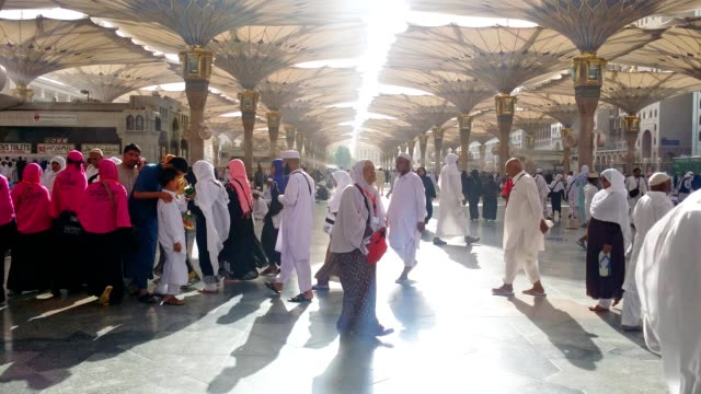 pilgrims in prophet's mosque for prayer. - praying stock videos & royalty-free footage