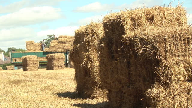 ms, piling of hay - hay bale stock videos and b-roll footage
