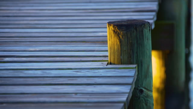 pilings - weathered stock videos and b-roll footage