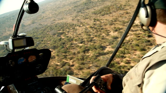 vídeos y material grabado en eventos de stock de pilot flying helicopter over the bushveld rhino poaching is a major threat to the extinction of rhinos living in and around nature reserves in south... - perspectiva desde un helicóptero