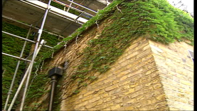 housing block residents to pay for maintenance of creeper vine creeper plant covering building to - creeper stock videos and b-roll footage
