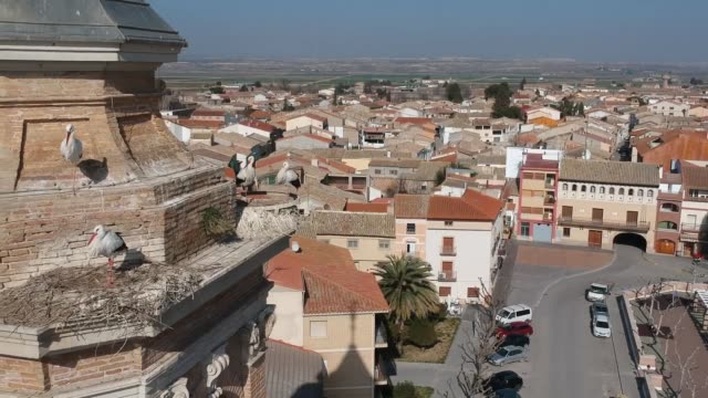 Pina Del Ebro with Storks nests on the Old Tower