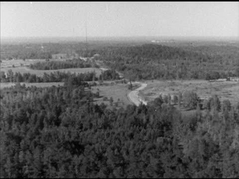 stockvideo's en b-roll-footage met pine forest in southern arkansas, various lumberjacks & mules pulling cut log , through forest. pine trees, lumberjack, felling, ar, laneburg, nevada... - agrarisch beroep