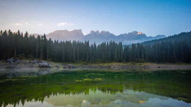 Montaña de bosque de pino, timelapse