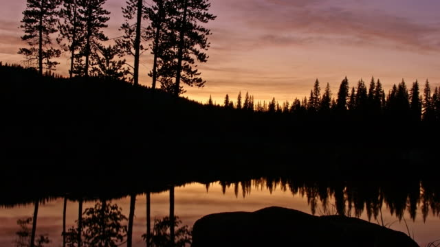 Pine tree forest silhouette and lake reflections at dusk sunset Anthony Lake in Wallowa-Whitman national forest 1