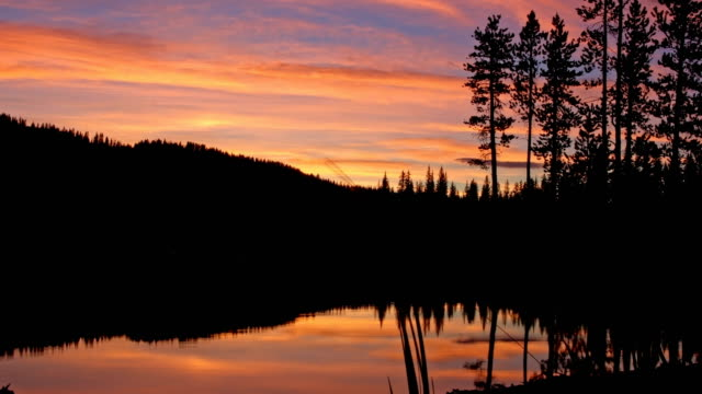 Pine tree forest silhouette and lake reflections at dusk sunset Anthony Lake in Wallowa-Whitman national forest 2