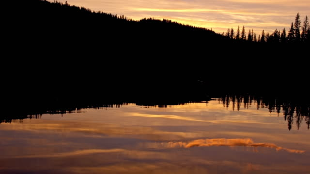 vidéos et rushes de pine tree forest silhouette and lake reflections at dusk sunset anthony lake in wallowa-whitman national forest 3 - pinacée