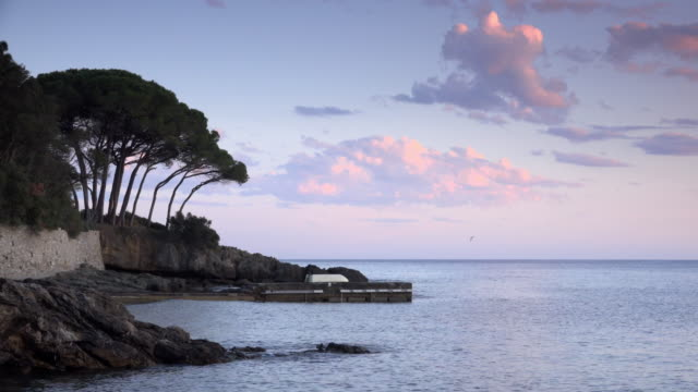 Pine trees at Calanchiole beach in the Gulf of Stella at dusk