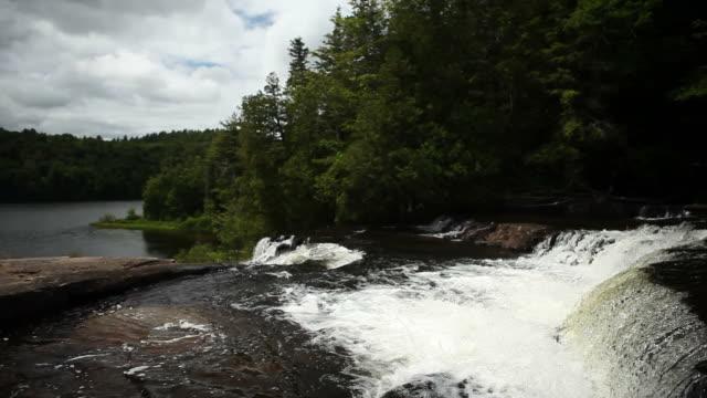 Pine Trees Behind Large Waterfall Flowing into Dark Lake
