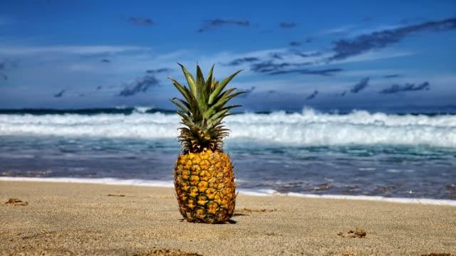 パイナップルのタイムラプスハワイ