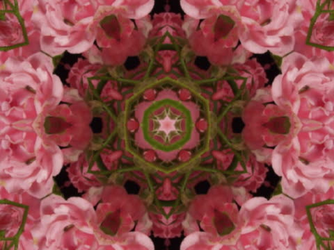 cu cgi pink and green evolving kaleidoscope pattern  - floral pattern stock videos & royalty-free footage