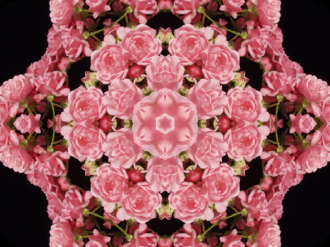 cu cgi pink and green star and flower kaleidoscope pattern  - kaleidoscope pattern stock videos & royalty-free footage