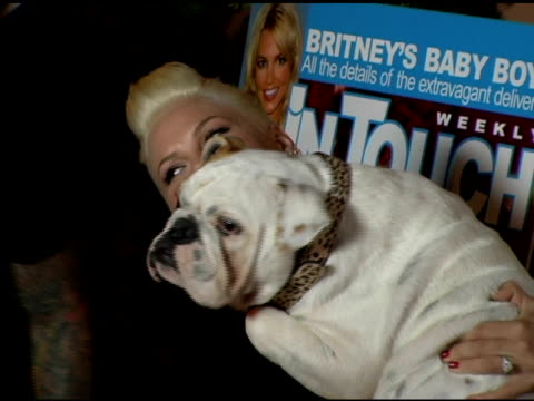 pink and her dog at the 'pets and their stars unleashed' presented by in touch weekly at cabana club in hollywood, california on september 22, 2005. - 歌手 ピンク点の映像素材/bロール