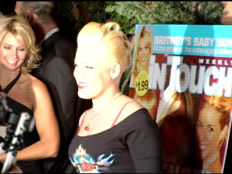 pink at the 'pets and their stars unleashed' presented by in touch weekly at cabana club in hollywood, california on september 22, 2005. - 歌手 ピンク点の映像素材/bロール