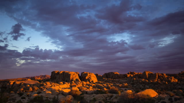 Pink Dawn in Joshua Tree National Park - Time Lapse