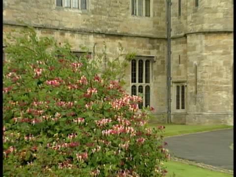 stockvideo's en b-roll-footage met pink flowers on bush unidentifiable people exiting leeds castle manicured grounds w/ paved walkway historic iconic landmark palace tourist... - zonnewijzer