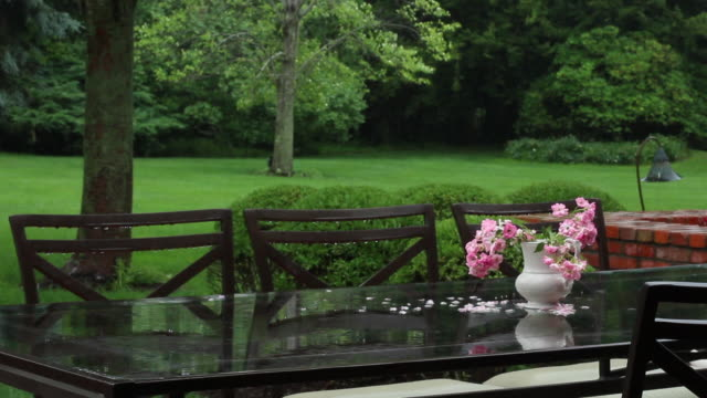 pink flowers on patio table in the rain - パティオ点の映像素材/bロール