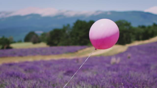 vídeos y material grabado en eventos de stock de globo de helio rosa ondulante en flores de lavanda - globo de helio
