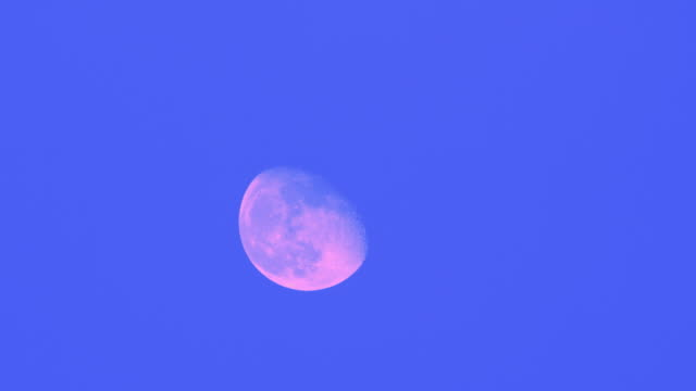 T/L, MS, Pink Moon moving across blue sky, Australia