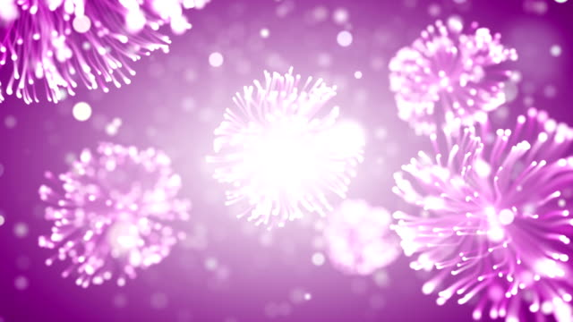 pink particles - sea anemone stock videos & royalty-free footage