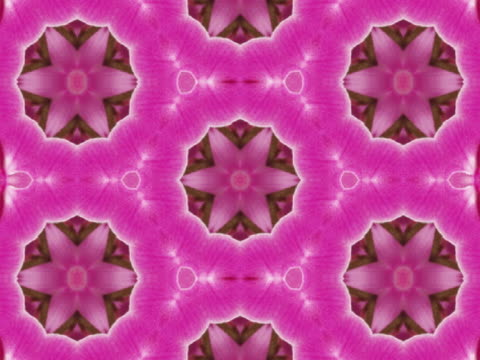 cu cgi pink star shaped kaleidoscope pattern  - floral pattern stock videos & royalty-free footage