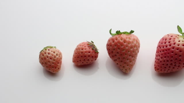 pink strawberries - four objects stock videos & royalty-free footage