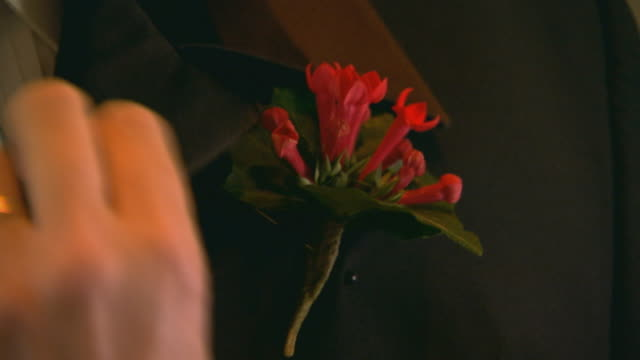 pinning on a boutonniere, close up - boutonniere stock videos and b-roll footage