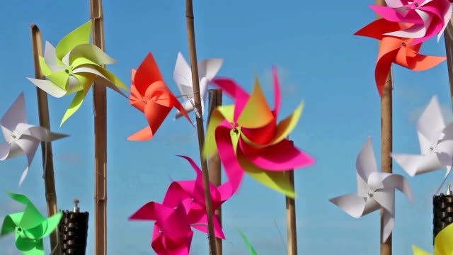 pinwheels on the beach - stick plant part stock videos & royalty-free footage