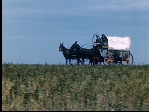 composite, pioneer wagon riding through fields, 1950's, oklahoma, usa - horse cart stock videos and b-roll footage